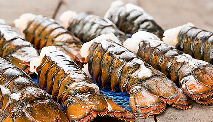 lobstertail