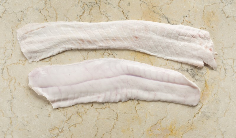 Frozen Dogfish Belly & Flaps, Medium & Large